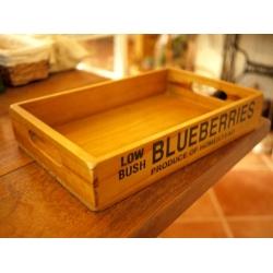 日本老木新作托盤