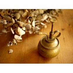 德國銅製老花灑澆花器